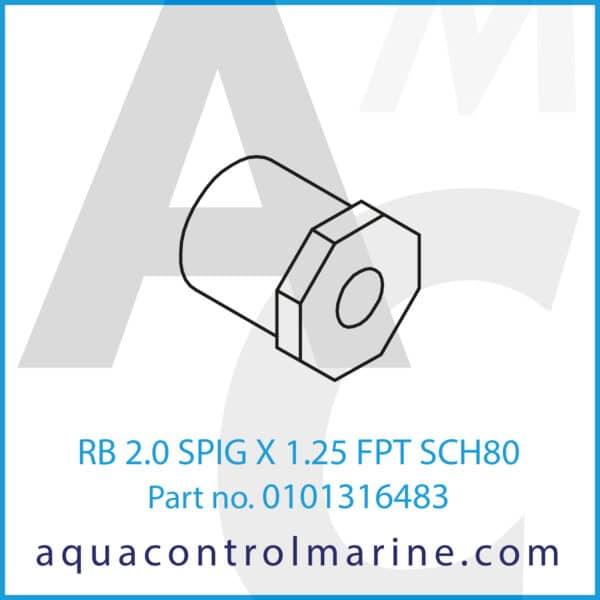 RB 2.0 SPIG X 1.25 FPT SCH80