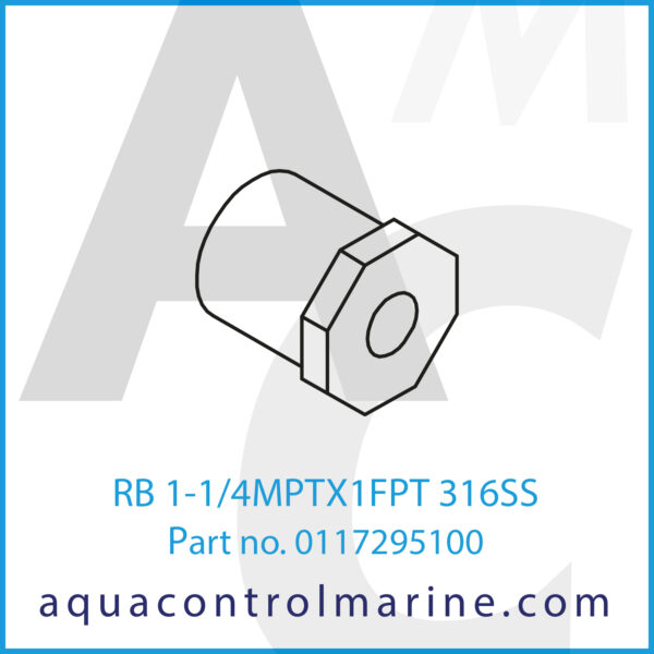 RB 1-1_4MPTX1FPT 316SS
