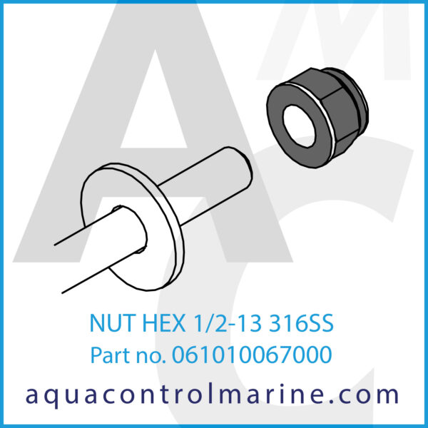 NUT HEX 1_2-13 316SS