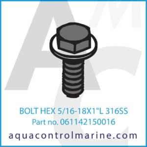 BOLT HEX 5_16-18X1inch L 316SS