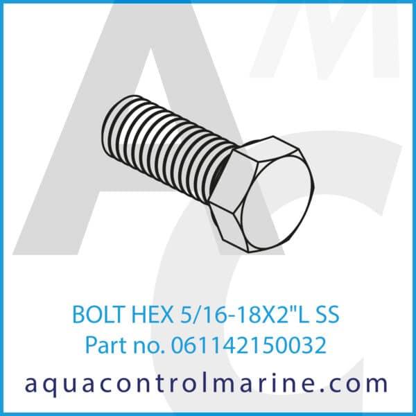 BOLT HEX 5_16-18X2inchL SS