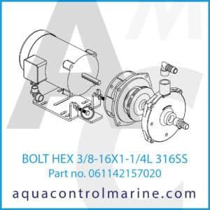 BOLT HEX 3_8-16X1-1_4L 316SS