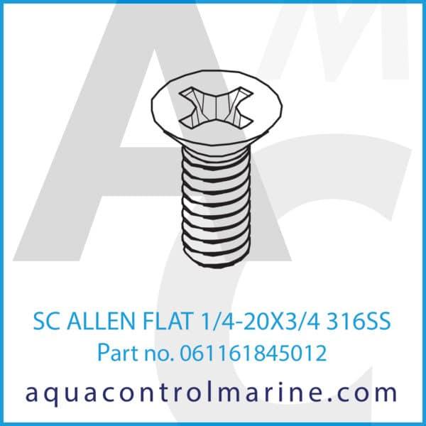 SC ALLEN FLAT 1_4-20X3_4 316SS