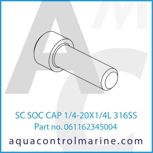 SC SOC CAP 1_4-20X1_4L 316SS