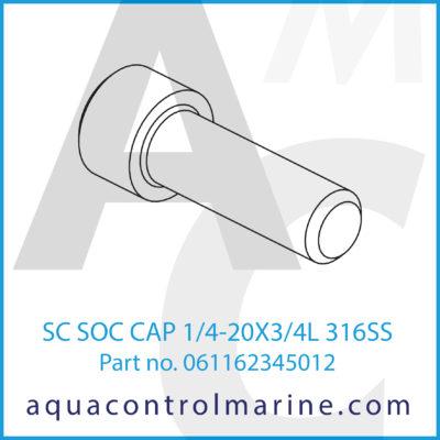 SC SOC CAP 1/4-20X3/4L 316SS