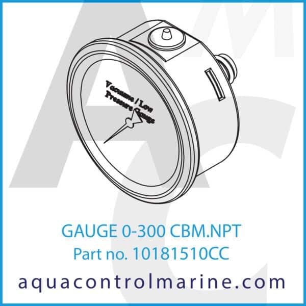 GAUGE 0-300 CBM.NPT