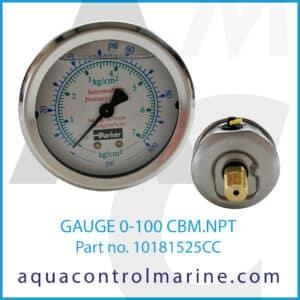 GAUGE 0-100 CBM.NPT