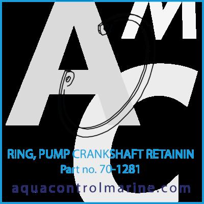 RING PUMP CRANKSHAFT RETAINING