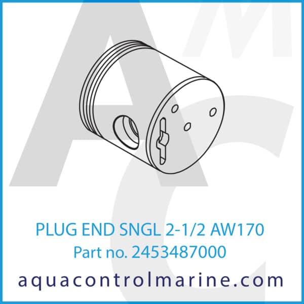 PLUG END SNGL 2-1_2 AW170