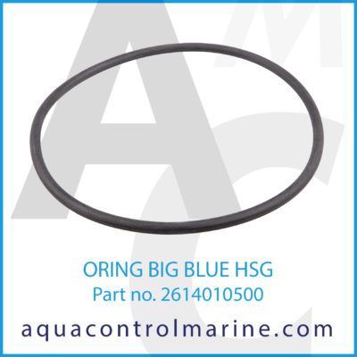 O-RING BIG BLUE HSG