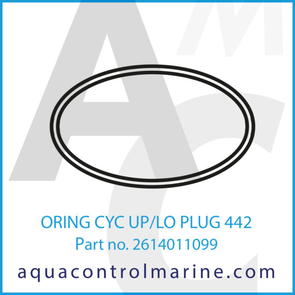 ORING CYC UP_LO PLUG 442