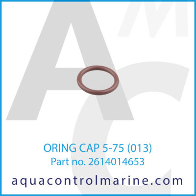O-RING 013 CAP 5-75