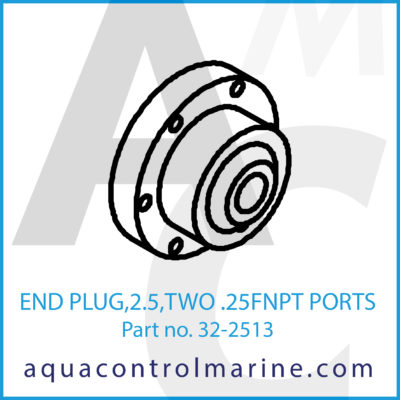 END PLUG 2.5 TWO .25FNPT PORTS
