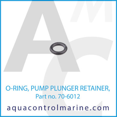 O-RING PUMP PLUNGER RETAINER