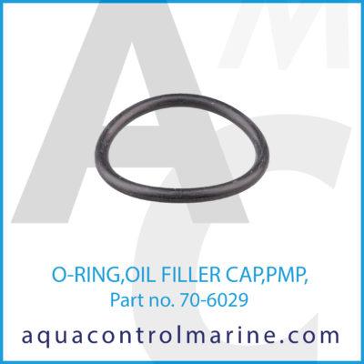 O-RING OIL FILLER CAP PMP