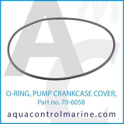 O-RING PUMP CRANKCASE COVER